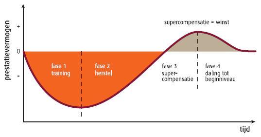 supercompensatie